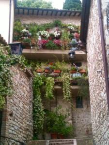 Assisi_o_Cordoba?